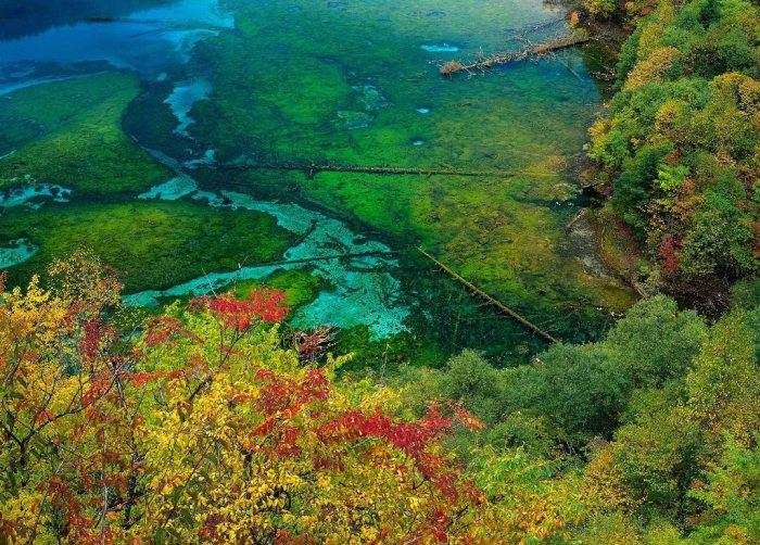 Завораживающие пейзажи (35фото)