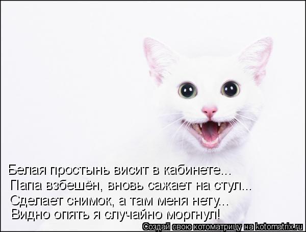 Давайте улыбаться вместе! :) (23улыбоки)
