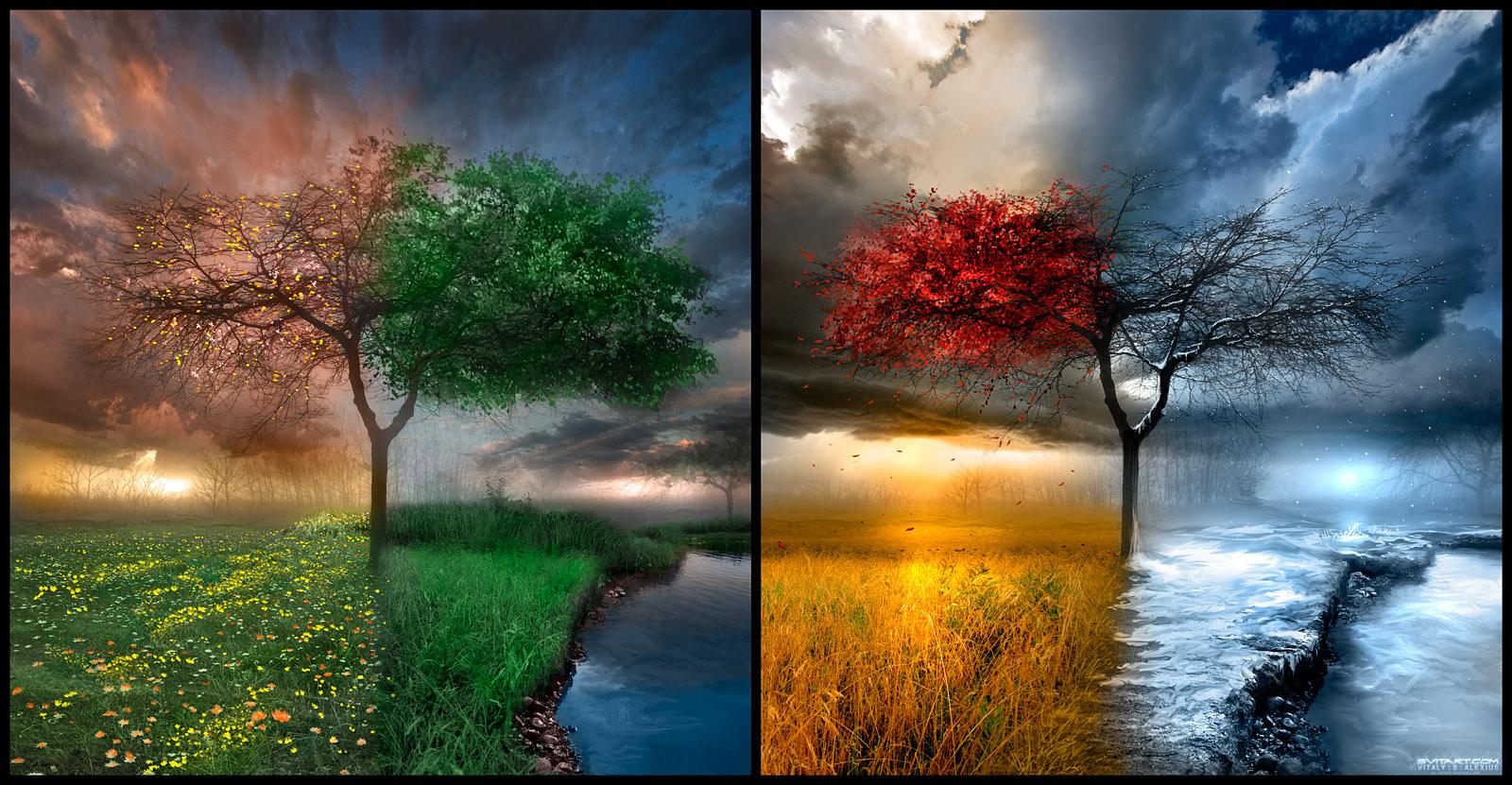 Изображения природа и животные